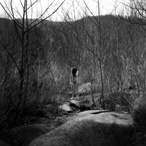 Deserted in the Mountains V, February 2017