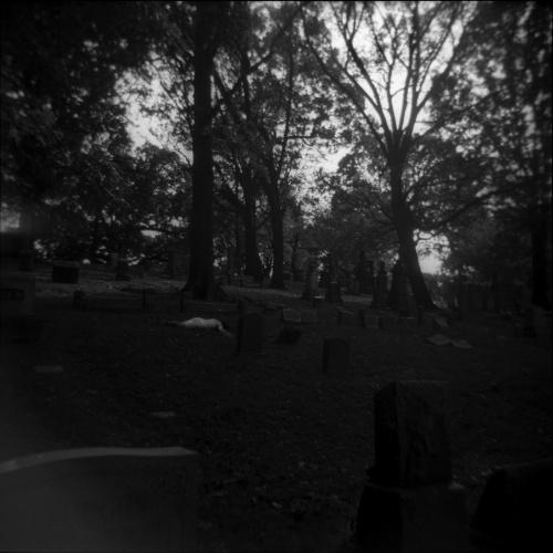 Karissa in Cemetery I, 2018